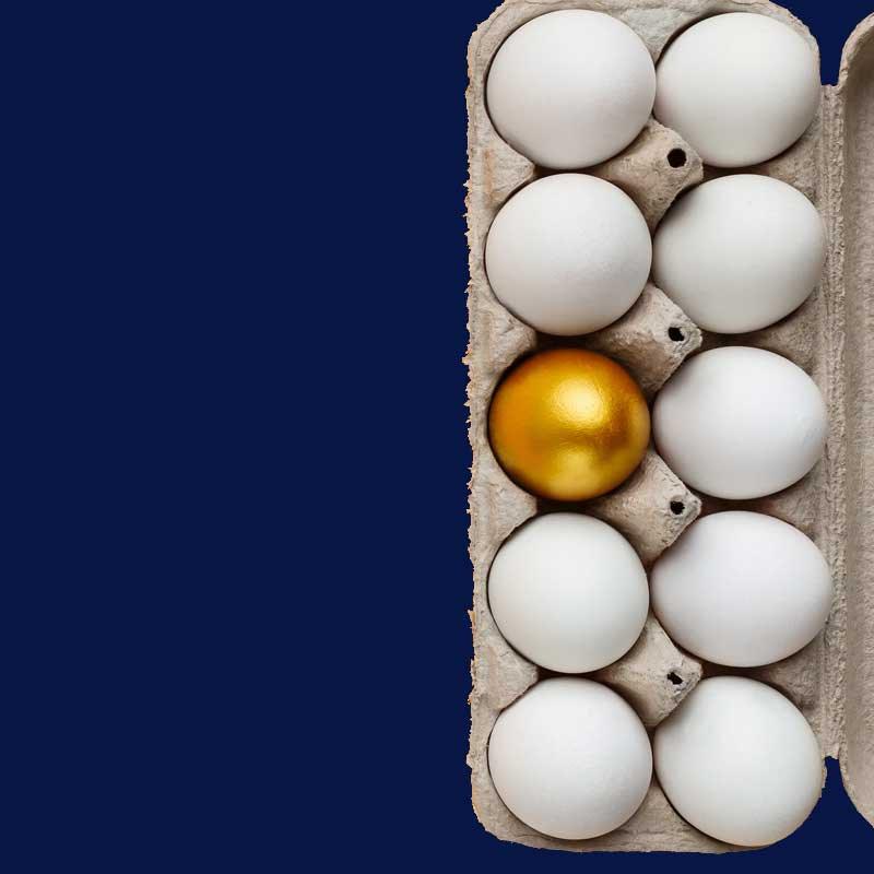 Golden egg under white eggs